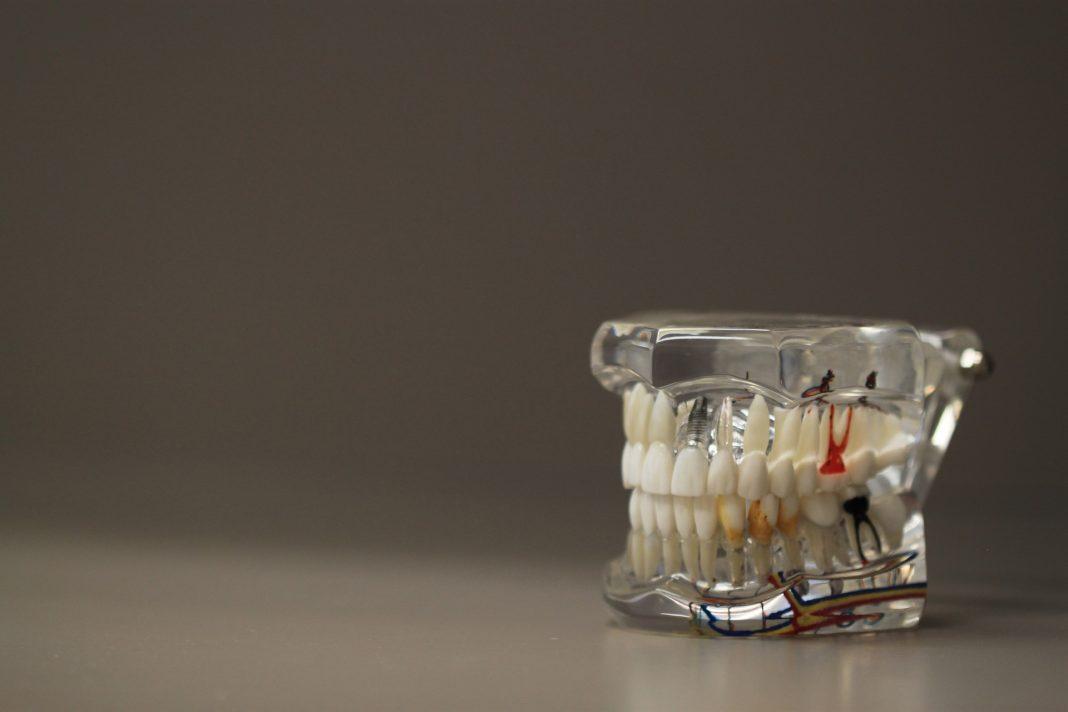 stomatologie moderna