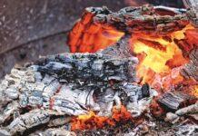 cenusa de lemn